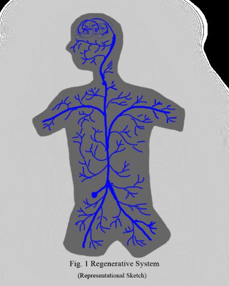 Regenerative System