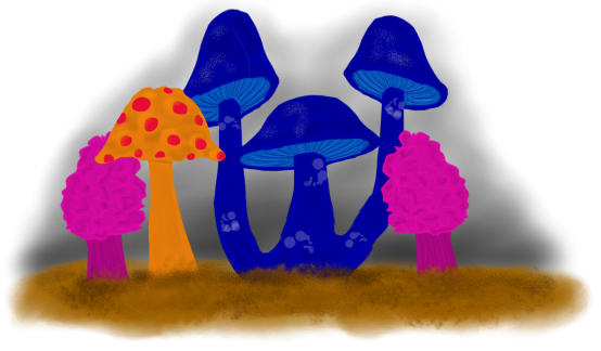 Brightly Colored Mushrooms