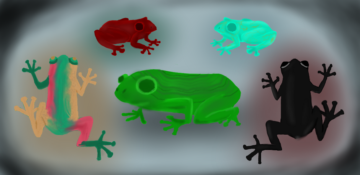 Quill 94 Five Frogs Image 1 Final Alt 2