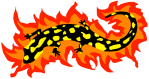Salamander 200 dpi Image 1 With Flames Final