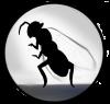 Storyfeather Queen Ant Alien 200 dpi Final